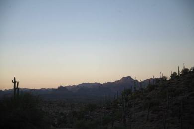 Picketpost Mountain Trail
